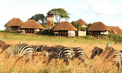 Kidepo-Valley-National-Park-1