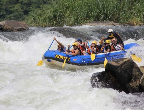 1 DAY EXCUSTION – Tour Source of the Nile, White water Rafting & Mabira Road side Market