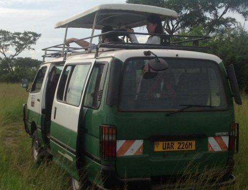 Toyota Hiace 9 Seater Safari Van