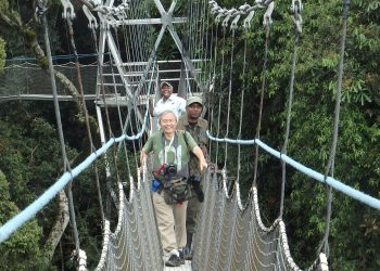 Canopy walk Nyungwe Forest Trail